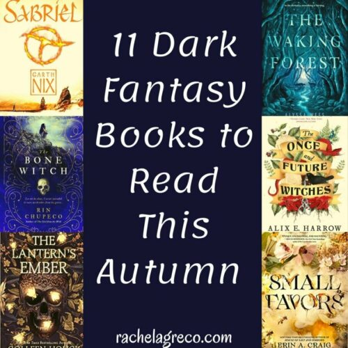 Read more about the article 11 Dark Fantasy Books to Read this Autumn