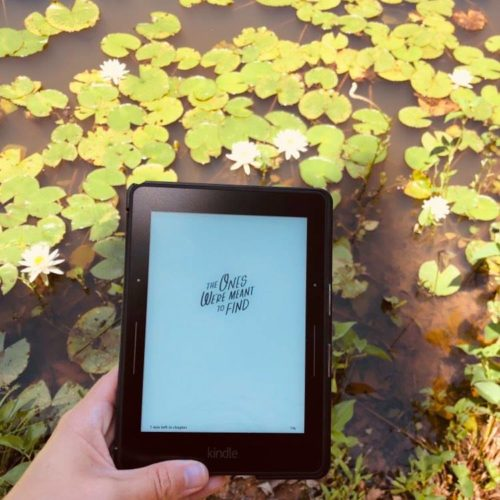 YA Sci-Fi Book Review: The Ones We're Meant to Find