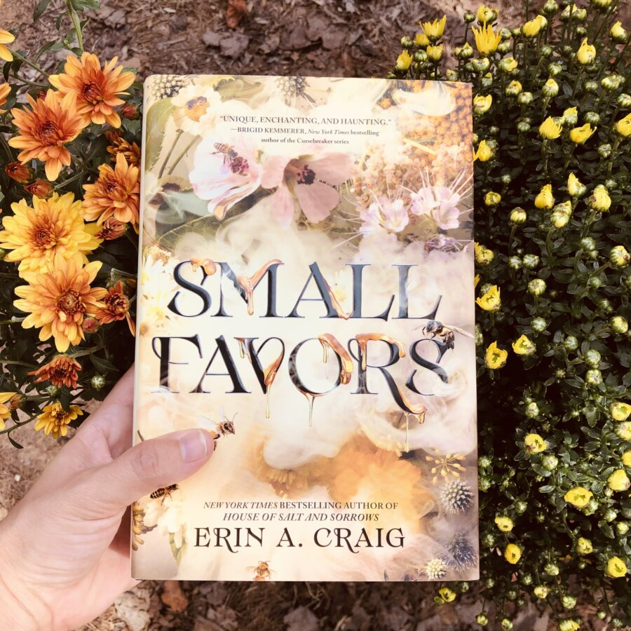 Read more about the article YA Fantasy Book Review: Small Favors