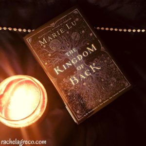 The Kingdom of Back Book Review