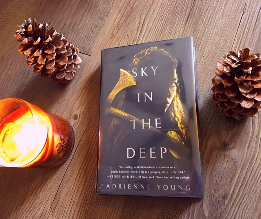 Sky in the Deep Book Review