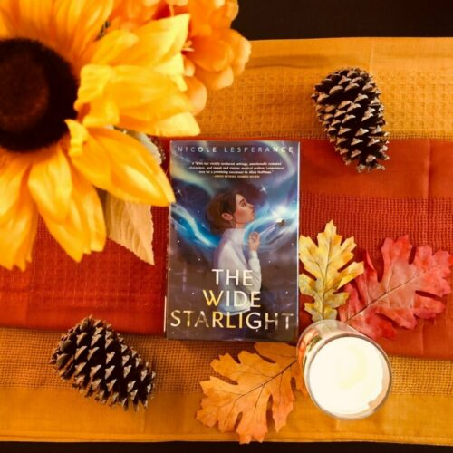 Read more about the article YA Fantasy Book Review: The Wide Starlight